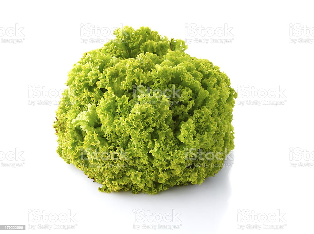 Loosehead lettuce stock photo