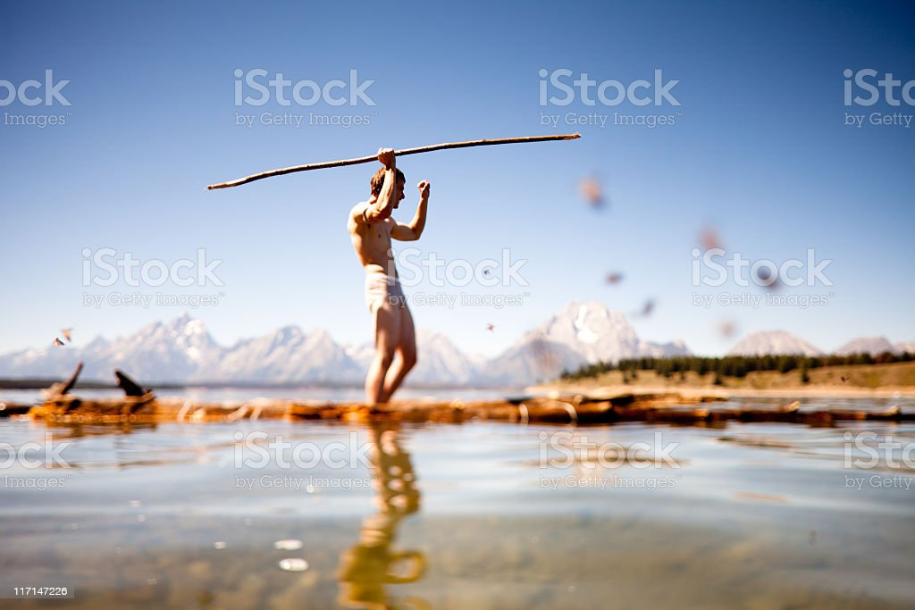 Lord of the Flys royalty-free stock photo