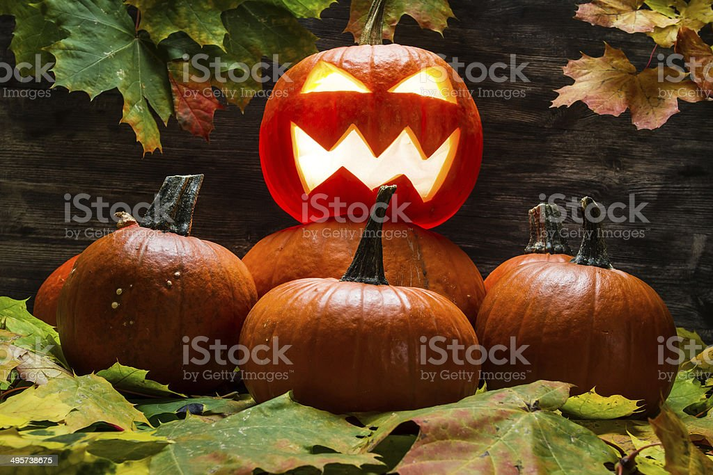 Lord of the pumpkins royalty-free stock photo