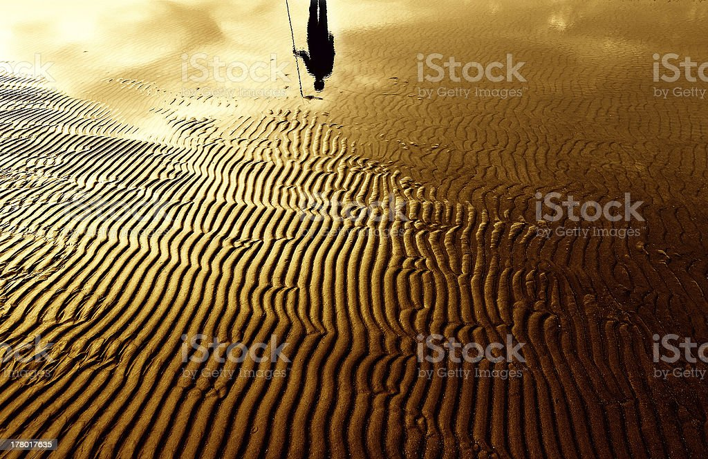 Lord of The Sand royalty-free stock photo