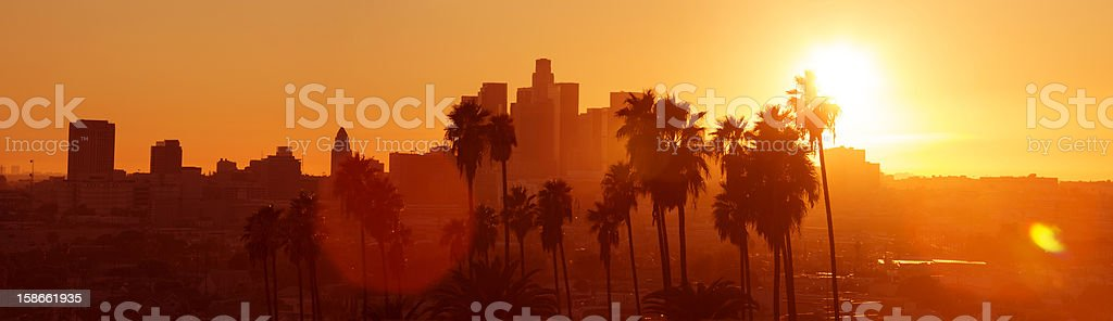 Los Angeles Palm Sunset stock photo