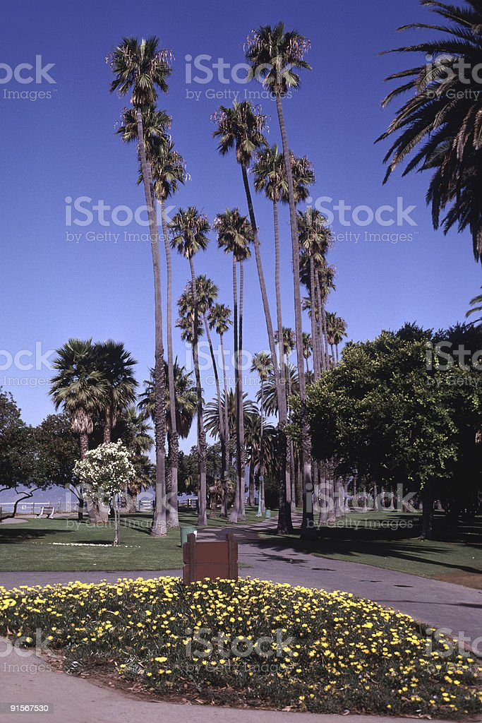 Los Angeles Park Trail royalty-free stock photo