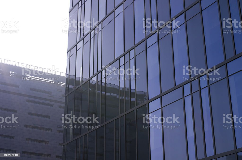 Los Angeles Police Department Detail no 1 royalty-free stock photo
