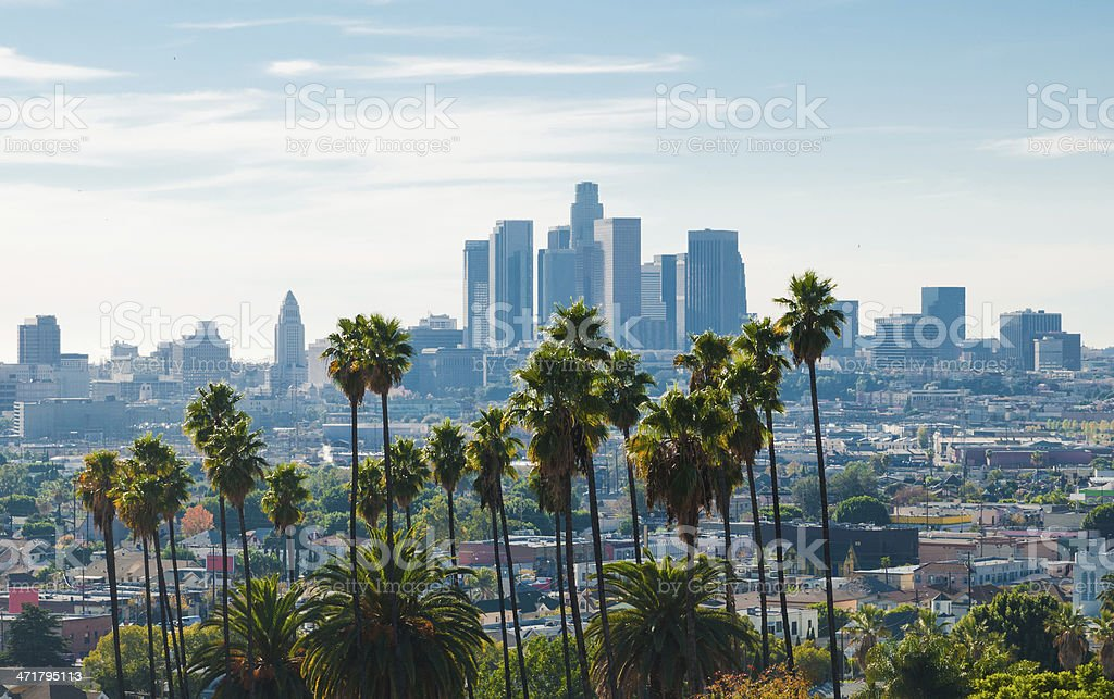 Los Angeles skyline aerial (backlit) w/ palm trees stock photo