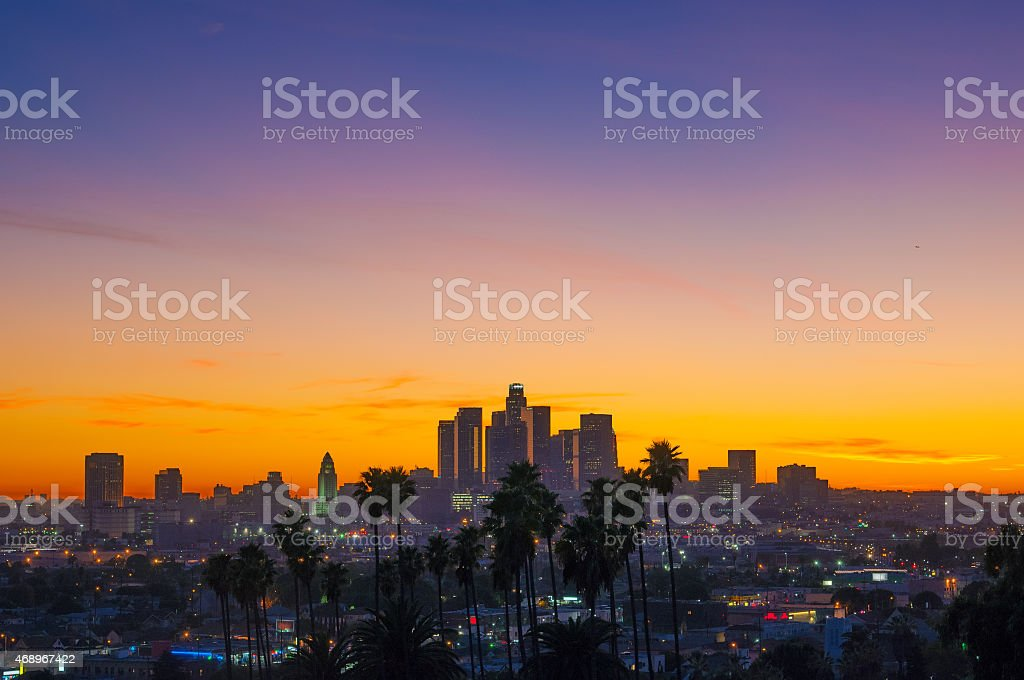 Los Angeles sunset with skyline and palm trees, wide angle stock photo