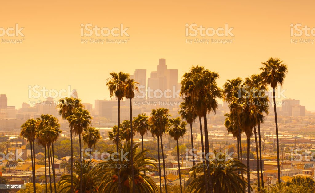 Los Angeles with palm trees in foreground at sunset stock photo