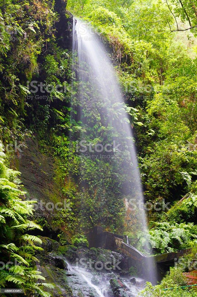 Los Tilos waterfall, La Palma, Canary Islandos royalty-free stock photo