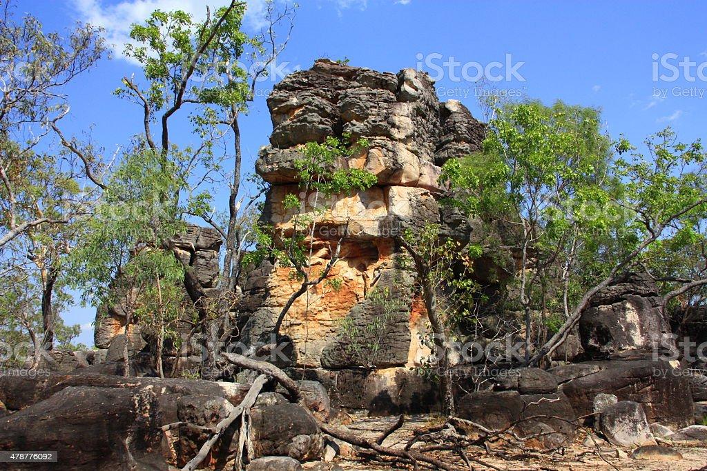 Lost City, Litchfield National Park, Australia stock photo