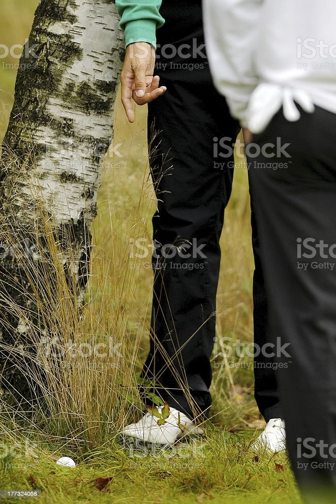 Lost golf ball in the woods stock photo