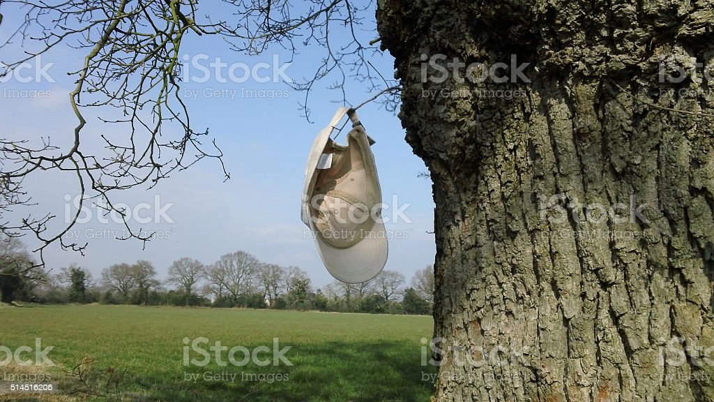 Lost hat hangs from tree - (1 of 2) stock photo