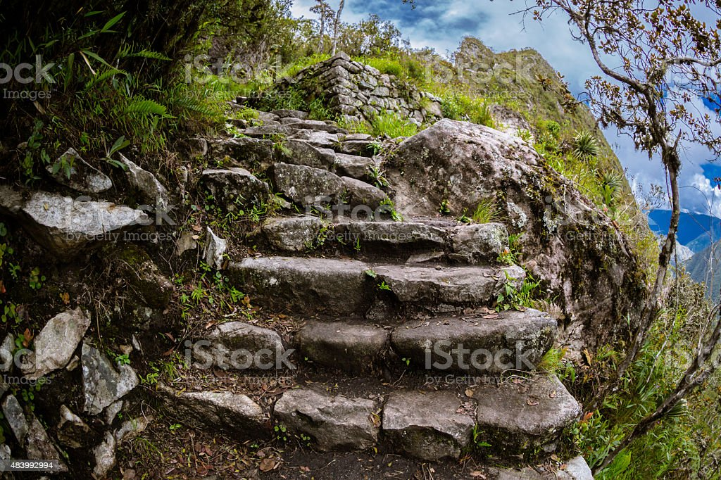 Lost in Machu Picchu stock photo