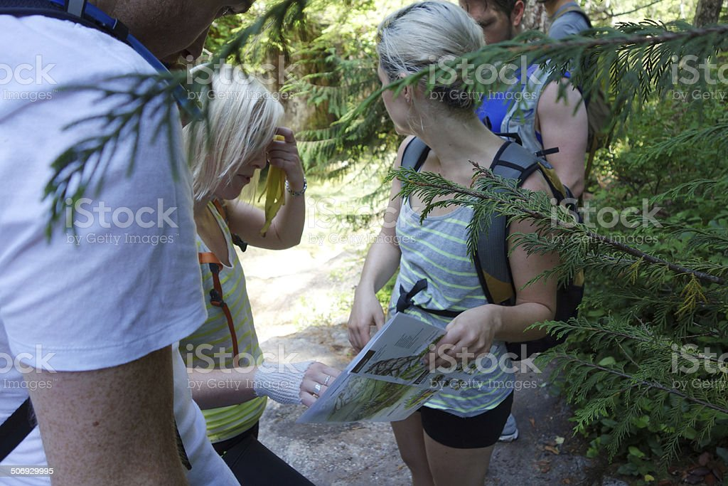 Lost in the wilderness, arguing about directions. stock photo