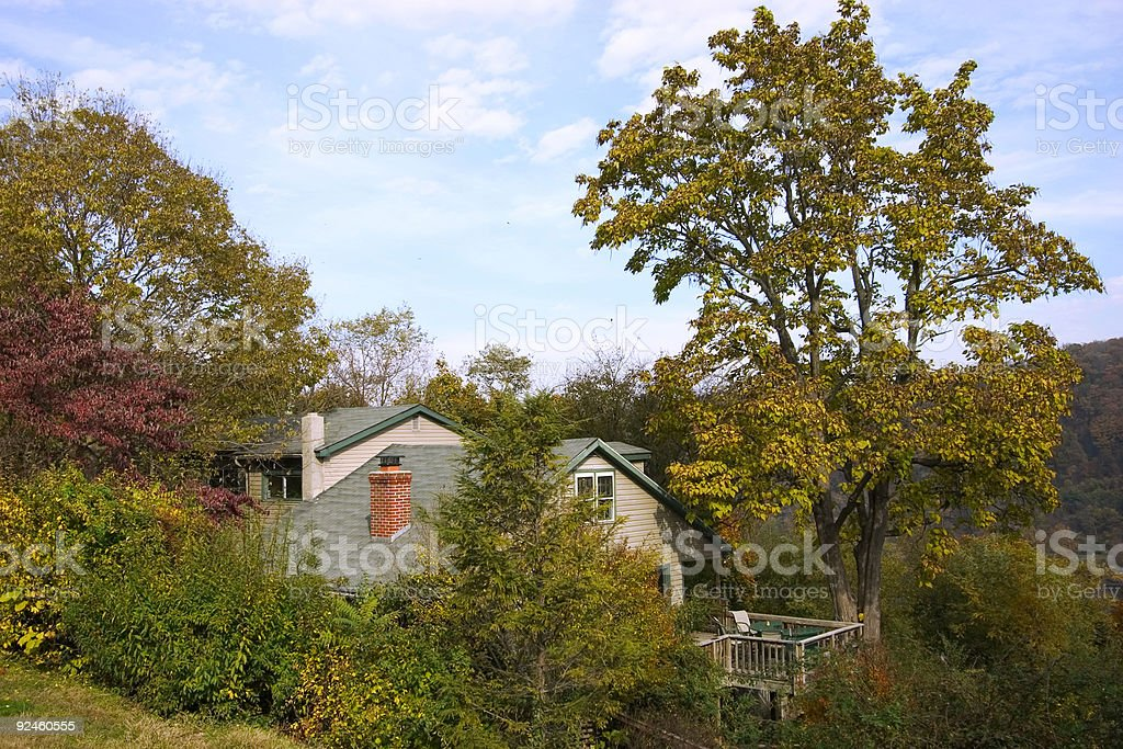 lost in the woods high in mountains stock photo