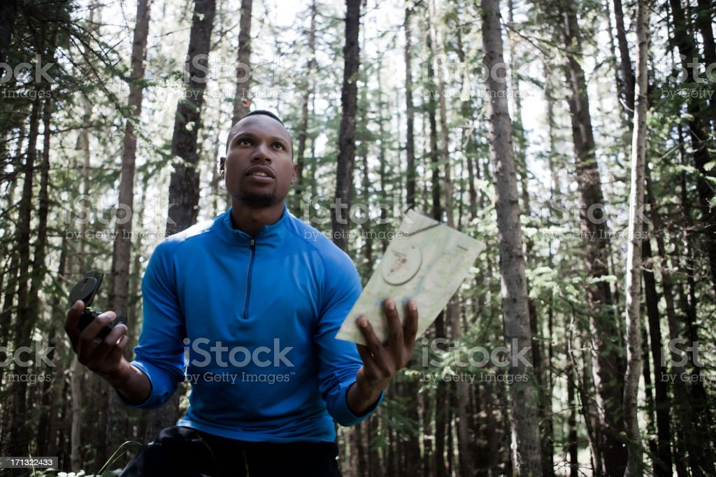 lost in the woods royalty-free stock photo
