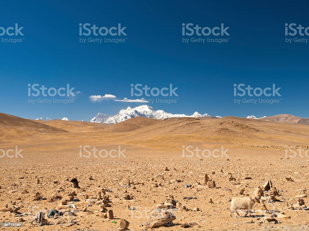 Lost in Tibet stock photo