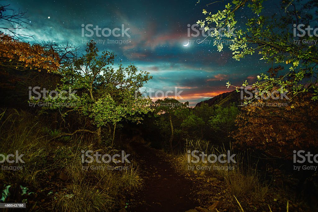 Lost Mine Trail. Road trip to Big Bend. stock photo