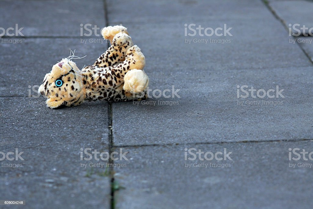 lost soft toy on the ground stock photo