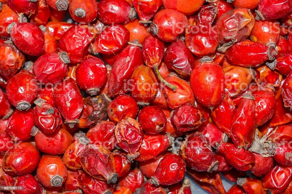Lot of rosehips texture background stock photo