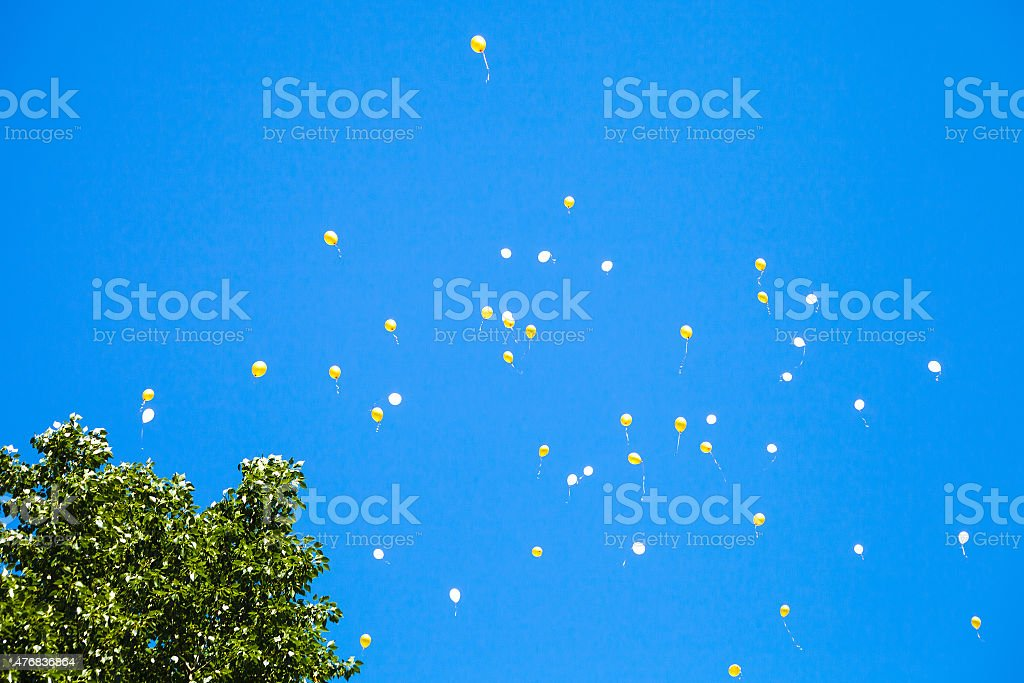 lot of toy balloons in the blue sky stock photo