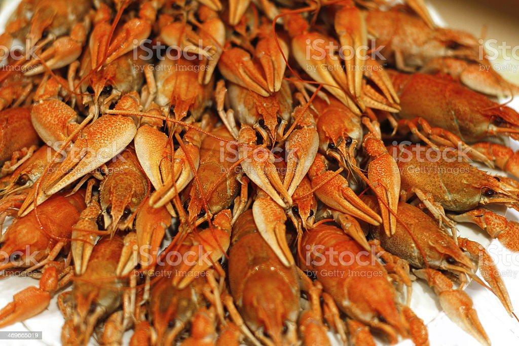 Lots of boiled crawfish royalty-free stock photo
