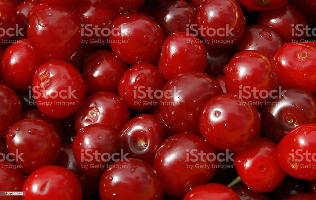 Lots of cherries stock photo