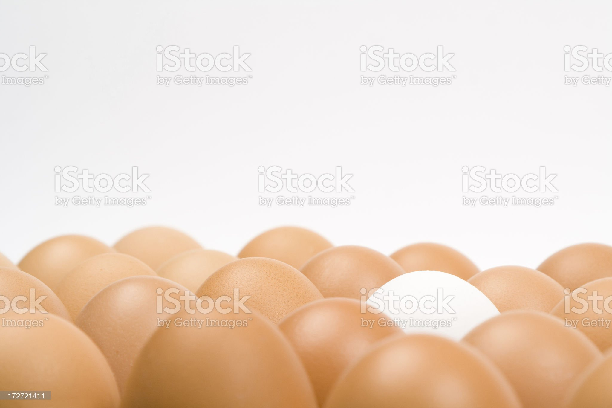 Lots of eggs royalty-free stock photo