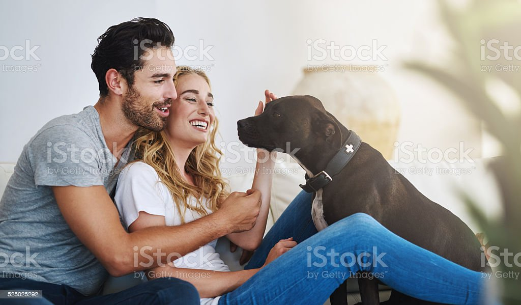 Lot's of love in this home stock photo
