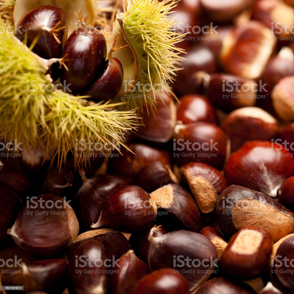 Lots of sweet chestnuts with one whole casing in foreground royalty-free stock photo