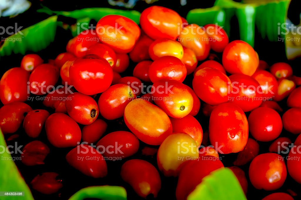 lots of tomatoes in the old market royalty-free stock photo