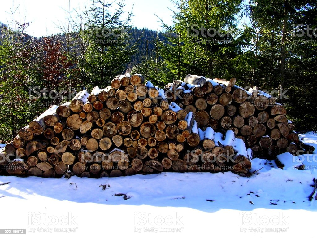 lots of wood stock photo