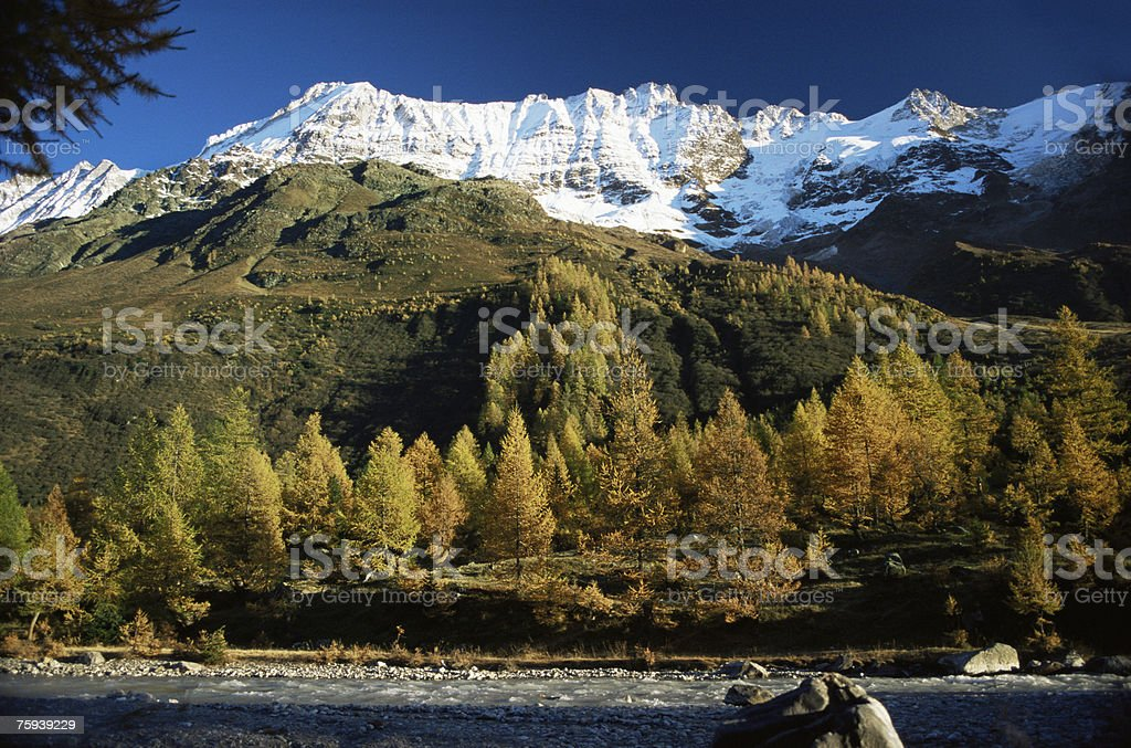 Lotschen valley royalty-free stock photo