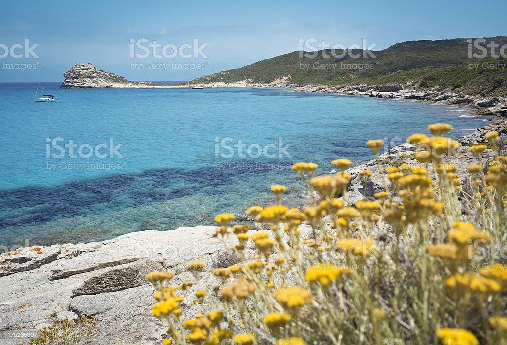Lotu Bay, Corsica France royalty-free stock photo