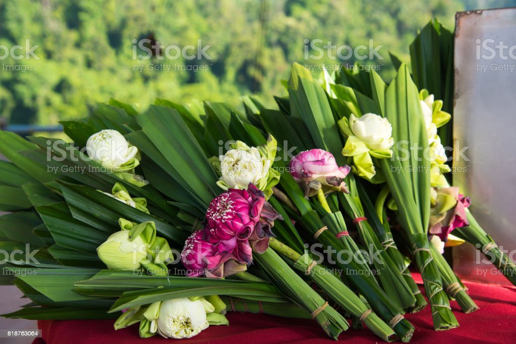 Lotus bouquet settle for worship or ceremony with Buddhism in Thailand temple. stock photo