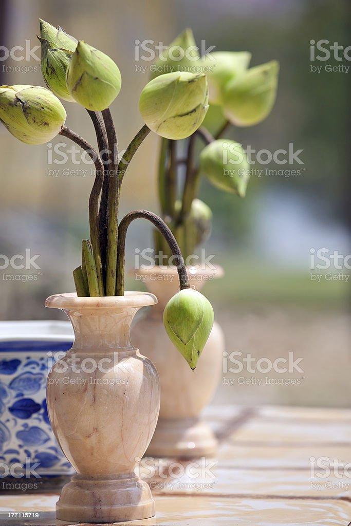lotus bud bouquet royalty-free stock photo