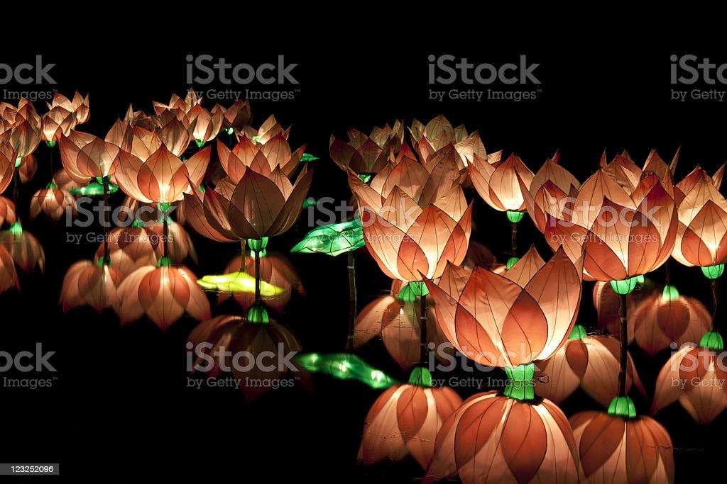 lotus lantern royalty-free stock photo