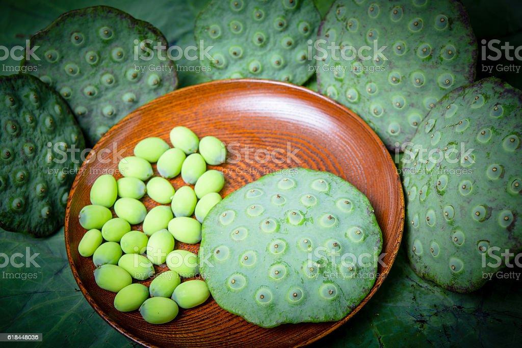 lotus seed stock photo