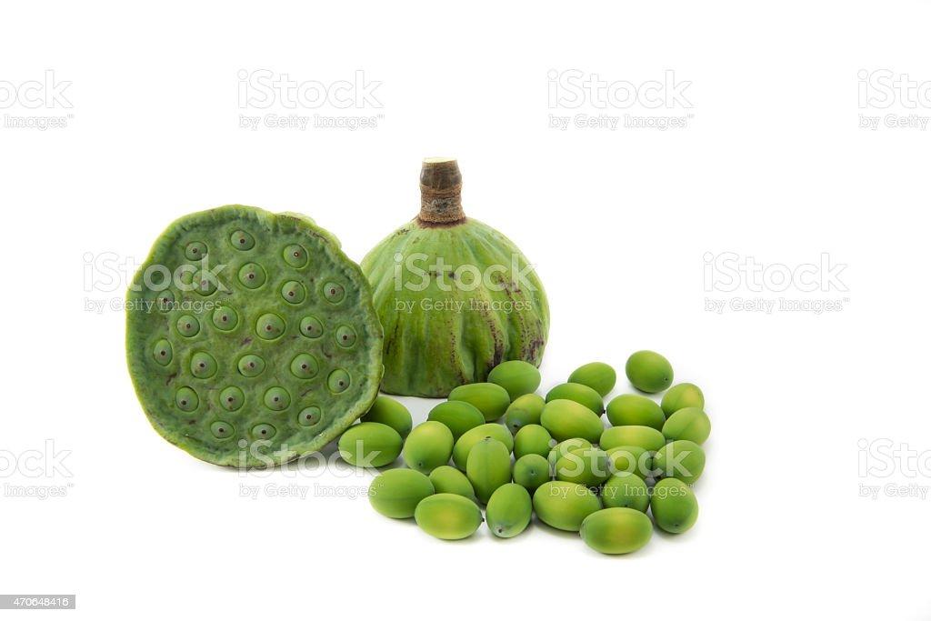Lotus seeds, isolated stock photo