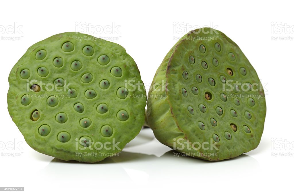 Lotus seeds on white background stock photo