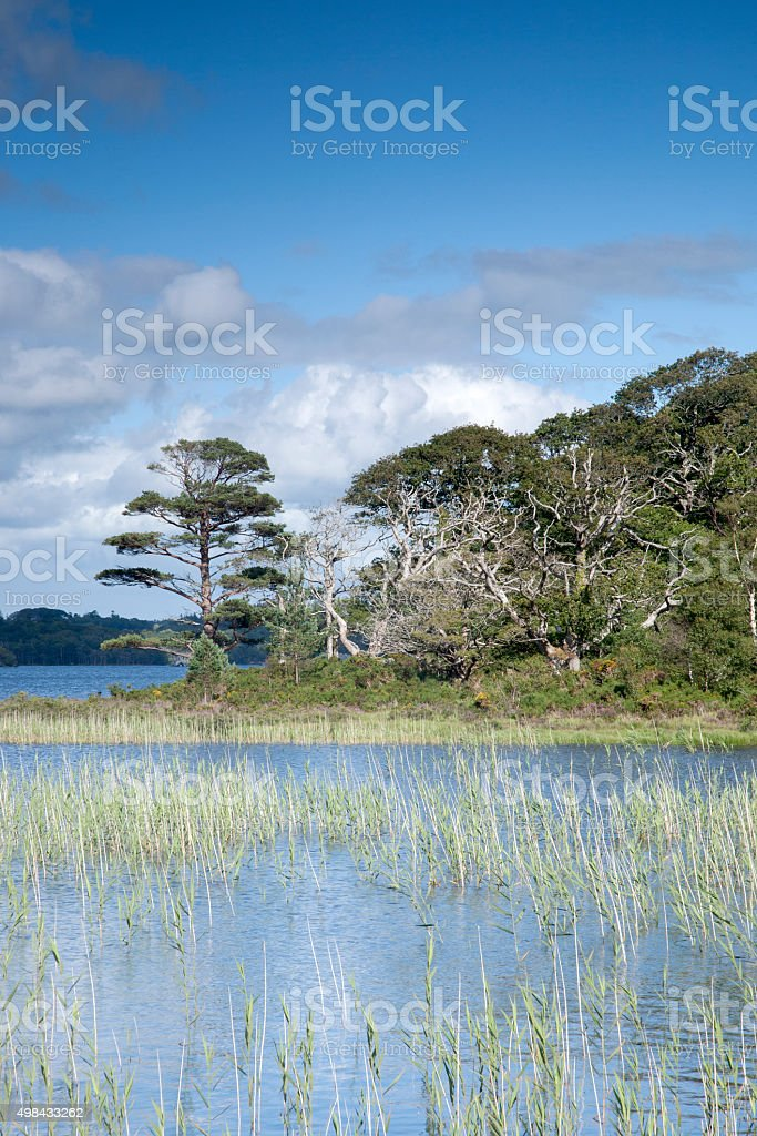 Lough Leane from Dinis Cottage Cafe Path, Killarney National Par stock photo