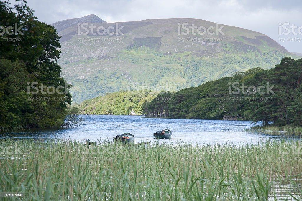 Lough Leane Lake, Killarney National Park stock photo
