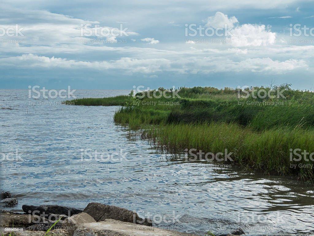 Louisiana Shoreline stock photo