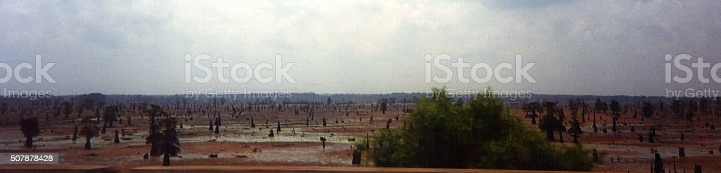 Louisiana wetlands, Mississippi river valley stock photo