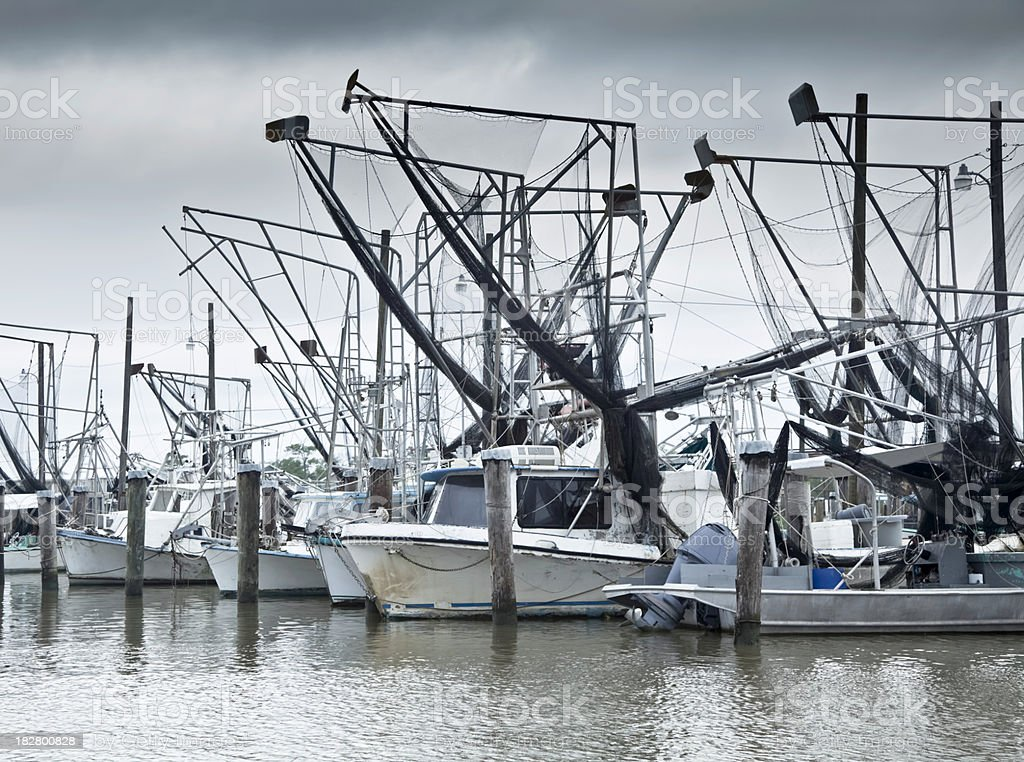 Louisianna Fishing Fleet Idled by the Gulf Oil Spill stock photo