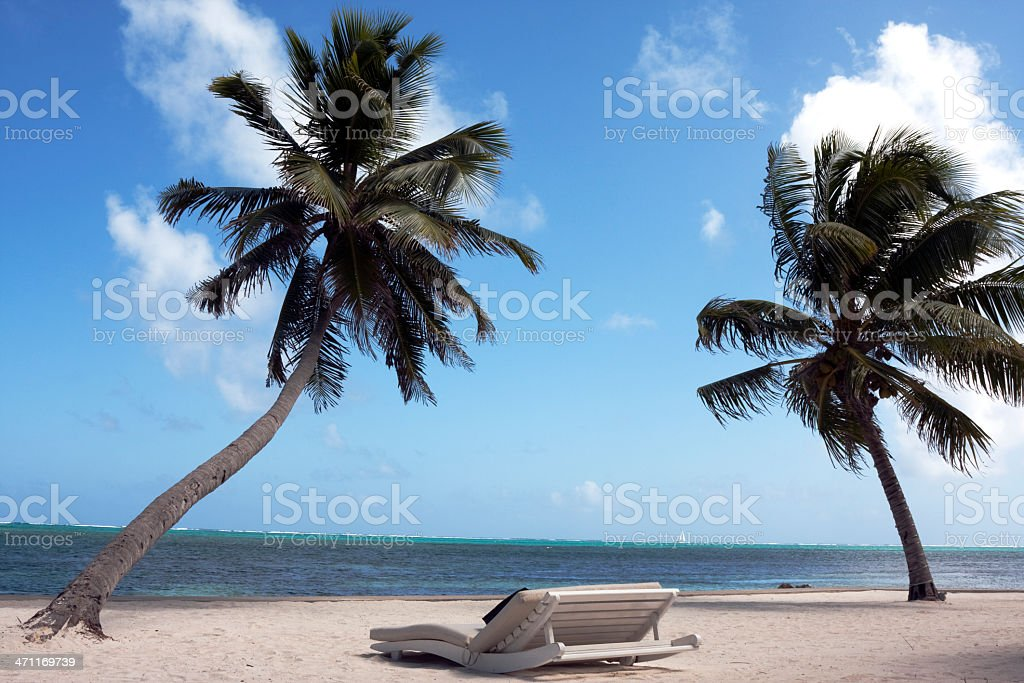 lounge chair under palm tree by ocean stock photo