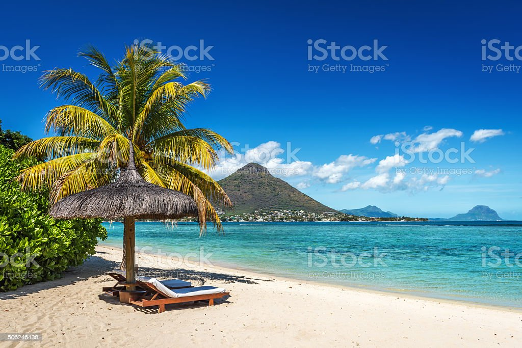 Loungers and umbrella on tropical beach in Mauritius stock photo