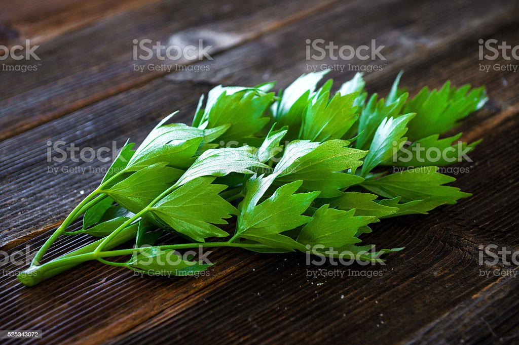 Lovage herb on wooden background stock photo