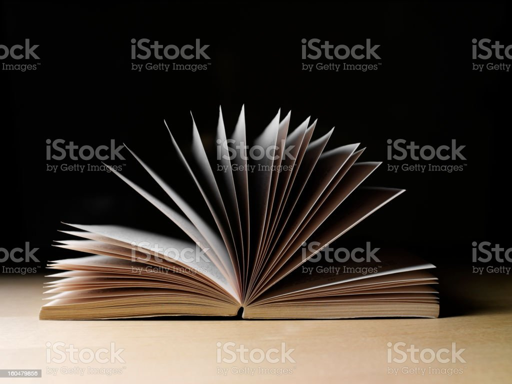 Love a good book stock photo