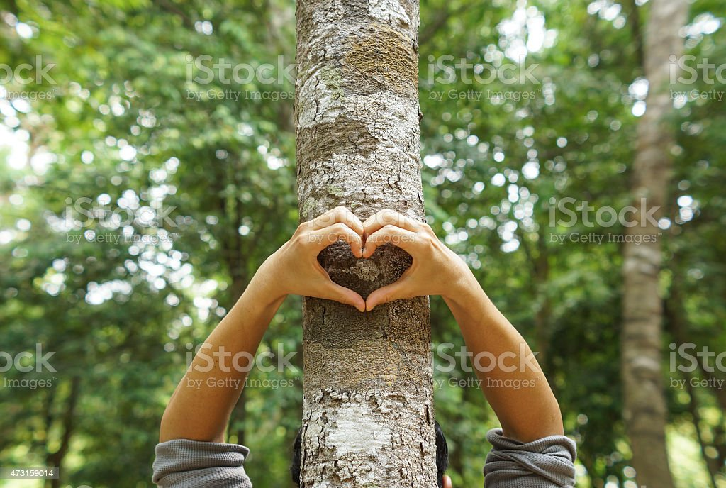Love and protect nature stock photo