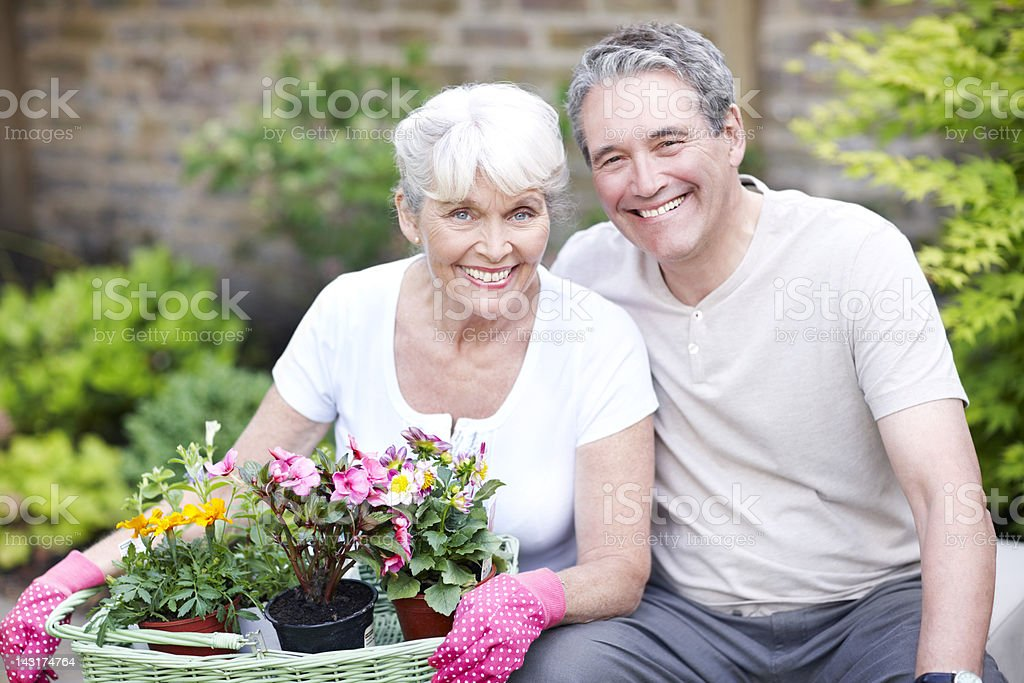 Love blossoming royalty-free stock photo