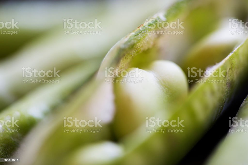 Love Broad Beans stock photo